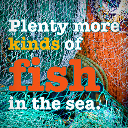 Greenplenty fish uploader firefox for More fish in the sea